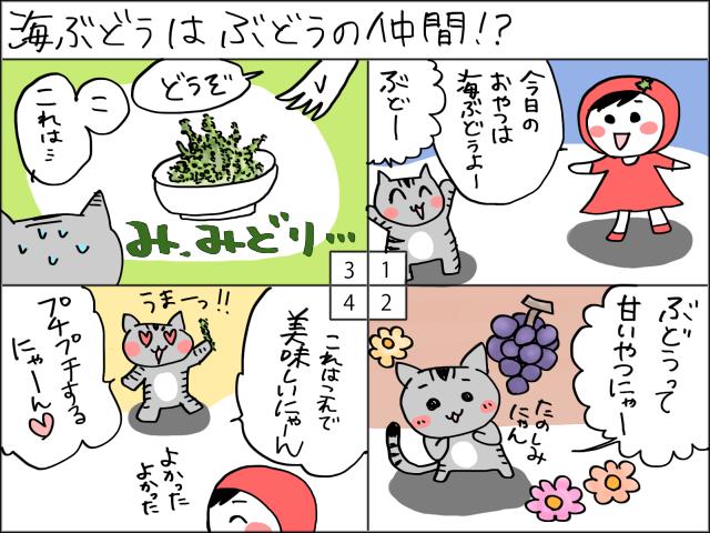まめ太の4コマ漫画「海ぶどうはぶどうの仲間!?」