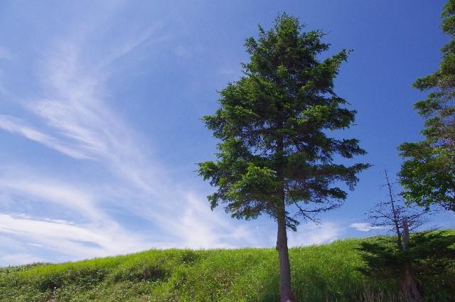 長野県イメージ画像